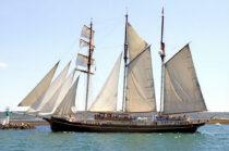 Exterieur GULDEN LEEUW - 3-mast topsail schooner te koop bij Scheepsmakelaardij Fikkers - 3 / 41