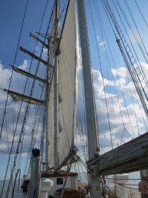 Exterieur GULDEN LEEUW - 3-mast topsail schooner te koop bij Scheepsmakelaardij Fikkers - 27 / 41