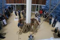 Exterieur GULDEN LEEUW - 3-mast topsail schooner te koop bij Scheepsmakelaardij Fikkers - 30 / 41